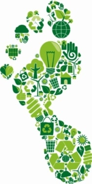 carbon footprint green icons sustainability foot